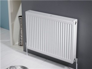 Double Panel Single Convector Type 21 [600mm x 1300mm]